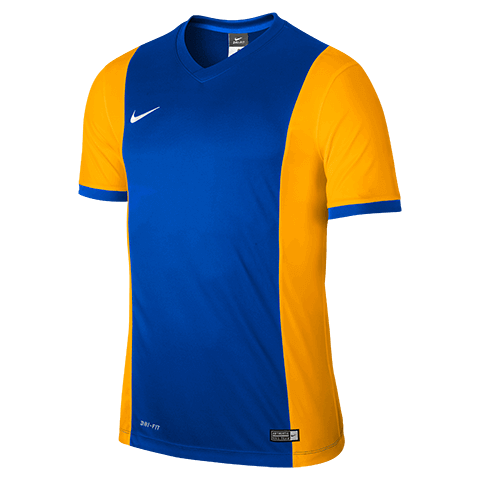 Park Derby Jersey Blue Gold